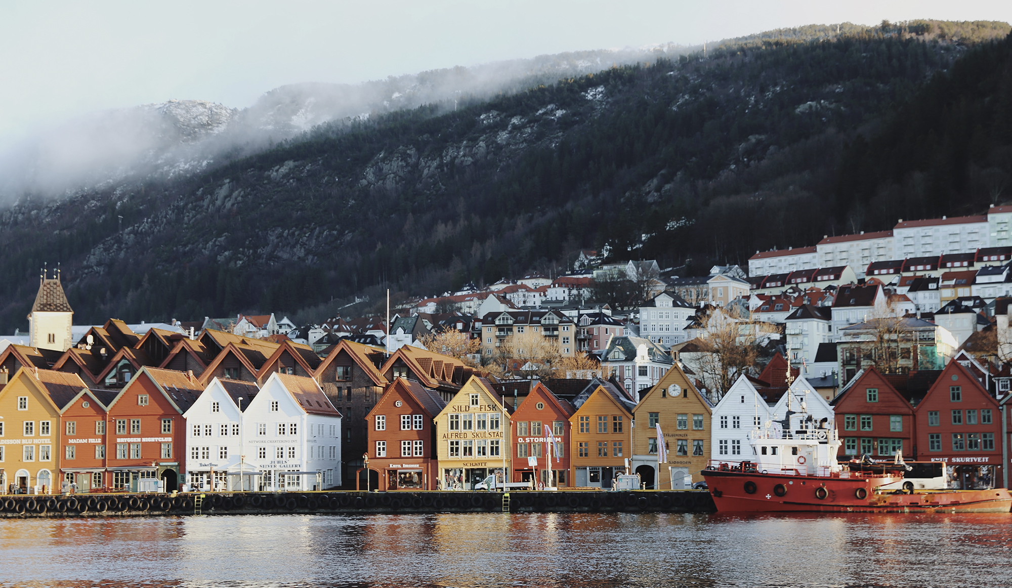 T-LAB Professional Partner in Norway