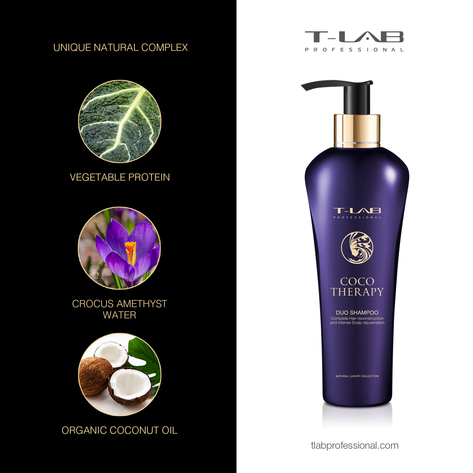 COCO THERAPY DUO SHAMPOO- Crocus Amethyst Water, Vegetable Protein, Organic Coconut Oil